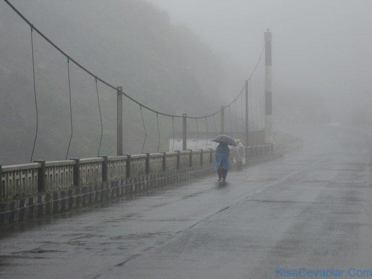 Dünyada en çok ve en az yağış alan yerler