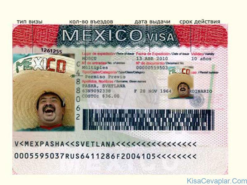 Meksika Vizesi ile ilgili görsel sonucu