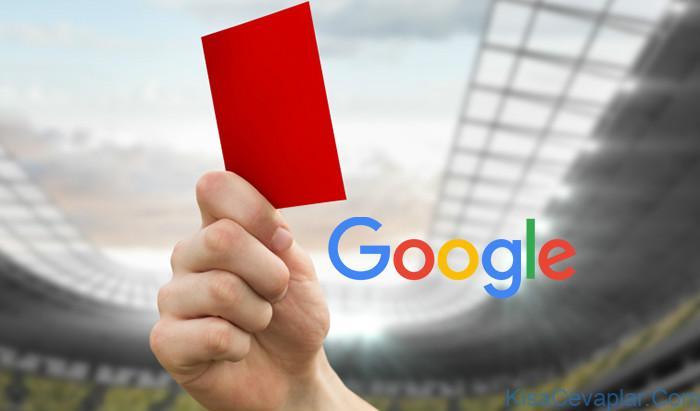 Google penalties ile ilgili görsel sonucu