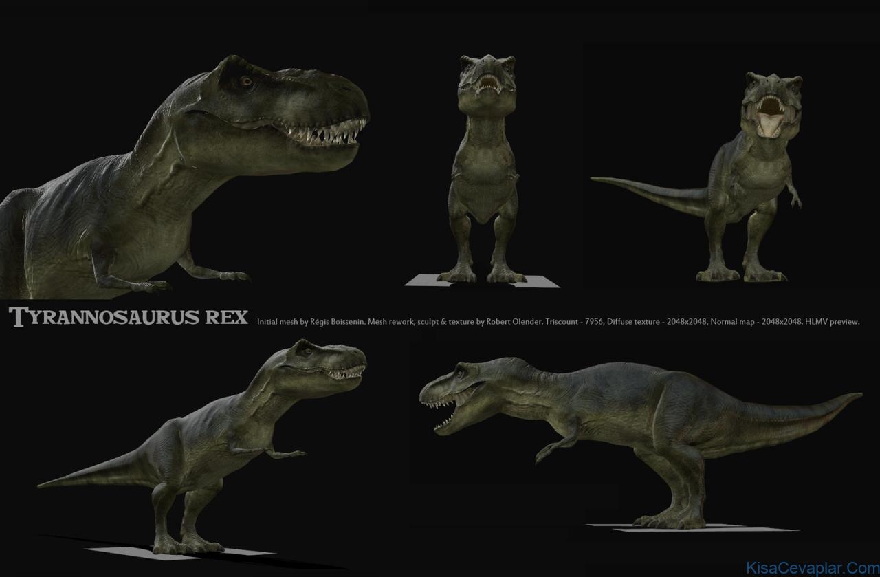 T-Rex maketi ile ilgili görsel sonucu