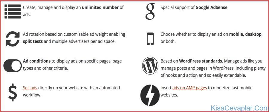 Advanced Ads plugin Pro
