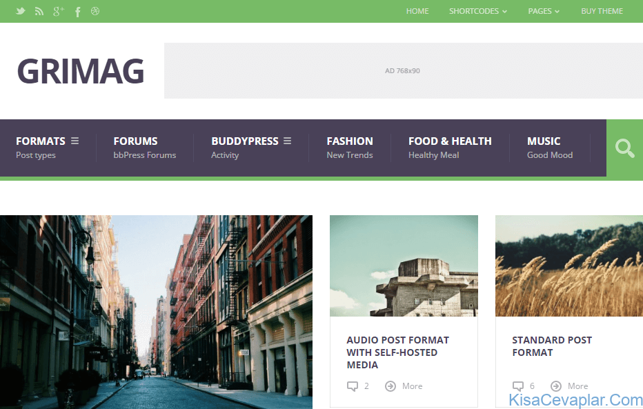 Grimag WP Theme