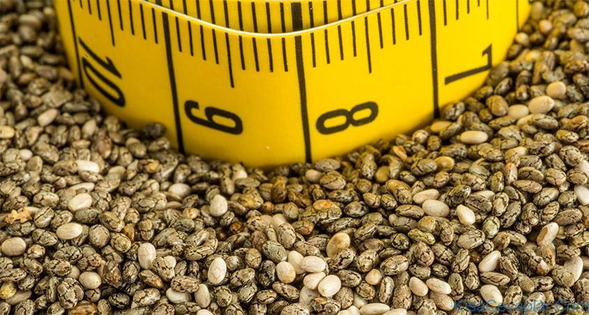 how much chia seed per day ile ilgili görsel sonucu