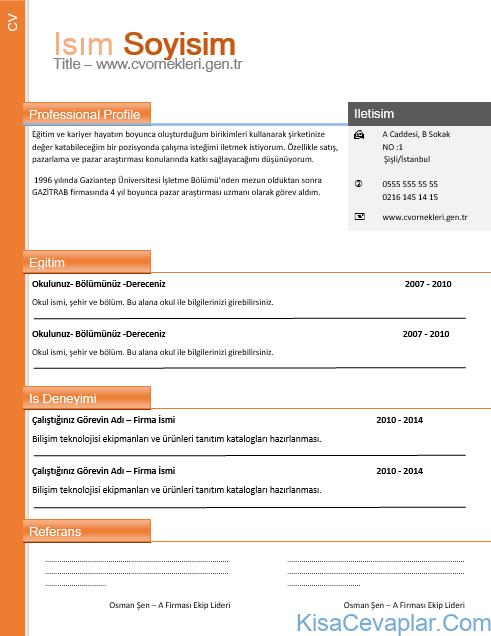 Profesyonel CV Örnekleri